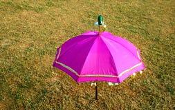 变粉红色伞 库存图片