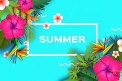 变粉红色木槿花 热带的夏天 棕榈叶,植物,赤素馨花-在纸的羽毛削减了艺术 鸟加那利群岛天堂tenerife 免版税库存照片