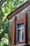 变老的大厦视窗,在结构树的影子 免版税库存图片