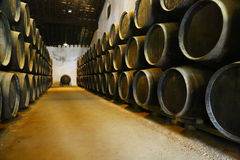 变老的酒的,赫雷斯de la弗隆特里桶 免版税库存图片