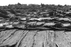 变老的maramures区域罗马尼亚屋顶震动 免版税库存照片