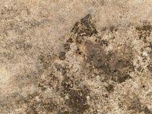 变色的混凝土 免版税库存照片