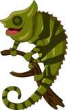 变色蜥蜴动画片微笑 库存图片