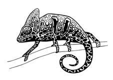 变色蜥蜴手拉的例证 免版税库存照片