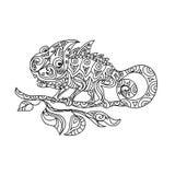 变色蜥蜴zentangle 免版税库存图片