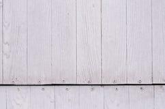变苍白白色木样式或纹理和钉子头 库存照片
