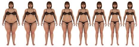 变薄一个白女孩的减重变革的油脂 免版税图库摄影