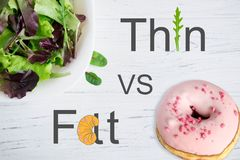 变薄对油脂 在健康营养题目的概念性照片  从甜食的害处 饮食和适当的营养 图库摄影
