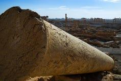 叙利亚,扇叶树头榈 免版税库存图片