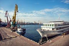 口岸在蓝天背景的货物起重机 海港,装载的起重机在日落 运输 图库摄影