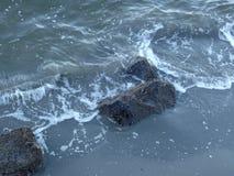 口岸果树园水前面海滩 免版税库存图片