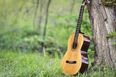 古典吉他在公园 免版税库存照片