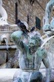 古典喷泉水 免版税图库摄影