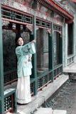 古典秀丽的瓷 图库摄影