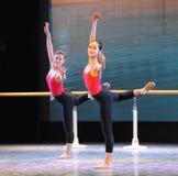 古典芭蕾基本的技巧基本的舞蹈培训班 免版税库存照片