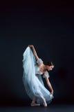 古典芭蕾舞女演员的画象白色礼服的在黑背景 免版税库存照片