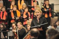 古典音乐会 库存照片