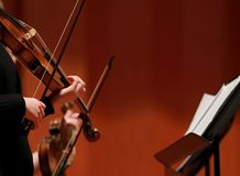 古典音乐 音乐会的小提琴手 串起,弹小提琴的音乐家violinistCloseup在交响乐期间 免版税库存图片