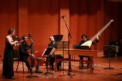 古典音乐 音乐会的小提琴手 串起,弹小提琴的音乐家violinistCloseup在交响乐期间 库存图片