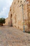 古城和棕榈树,耶路撒冷墙壁  免版税库存照片
