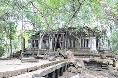 古城在密林, Beng Mealea 库存图片