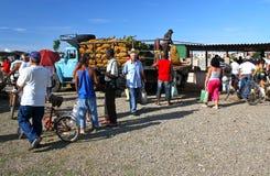 古巴农夫市场专用s特立尼达 库存照片