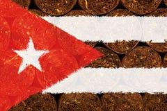 古巴和雪茄Flad  库存照片