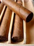 古巴棕色的雪茄 免版税库存照片