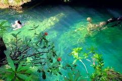古巴escambray绿色池塘热带瀑布 免版税库存照片