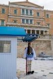 古希腊议会和总统豪宅的Evzonesin前面 免版税库存照片