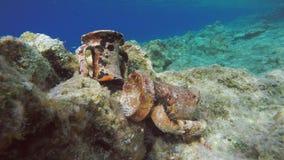 古希腊黏土水下Amphorae的遗物 免版税库存图片