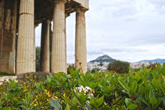 古庙在雅典 库存照片