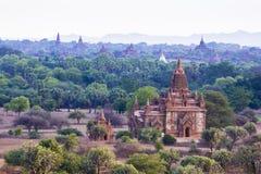 古庙在Bagan缅甸 库存照片