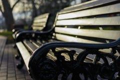 古板的长凳在春天公园 库存图片