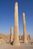 古老专栏的外部在波斯波利斯废墟的在设拉子,伊朗 库存照片