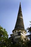 古老以后的密林塔泰国 免版税库存照片