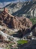 古老佛教王宫的古老废墟岩石的在Basgo的村庄,垂直的框架,拉达克,北Indi 库存图片