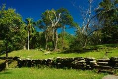 古老哥伦比亚北废墟 免版税库存照片