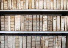 古老图书馆 免版税库存照片