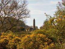 古老圆的塔在历史的Glendalough修道院站点的公墓在威克洛郡在爱尔兰 图库摄影