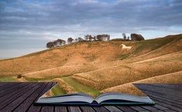 古老在风景的白垩白马在平衡Cre的秋天期间 免版税库存照片