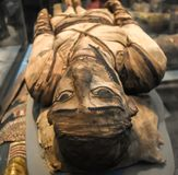 古老埃及妈咪细节在大英博物馆 图库摄影