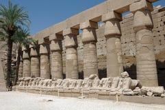 古老埃及柱子 免版税库存图片