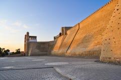古老城堡在布哈拉'平底船城堡' 库存图片
