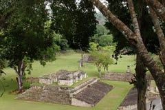 古老城市copan玛雅 免版税库存图片