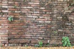 古老塔墙壁 免版税库存图片
