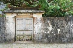 古老墙壁和绿色树 库存照片