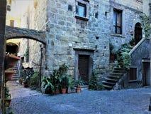 古老大厦、楼梯和曲拱 植物、历史和时间在维泰博市,意大利 免版税库存照片
