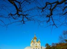 古老大厦在圣彼得堡,俄罗斯 库存照片