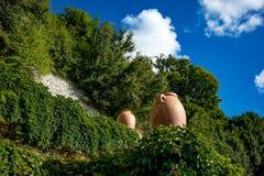 古老大土制瓶子在植物园里 图库摄影